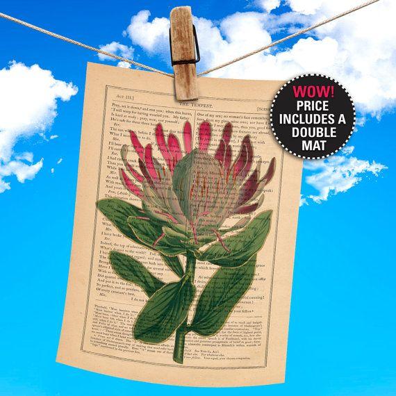 Flower Book Print Botanical Illustration by PrintHouseCompany, $15.00