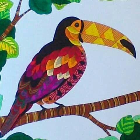 Animal Kingdom Mindfulness Coloring