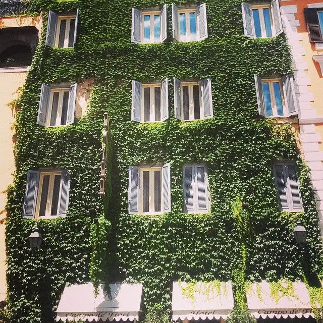 Campo dei fiori.Roma  #instapic#windows#familyintour#roma#igersroma#igerslazio#lovesroma#campodeifiori#beaitifulday#summer#sunday#instatravel#travel#romanelcuore