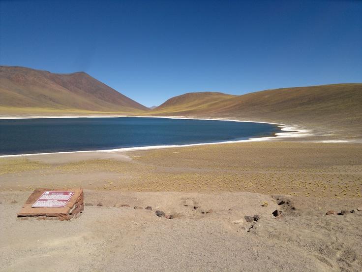 Lagos Altiplanos, San Pedro de Atacama