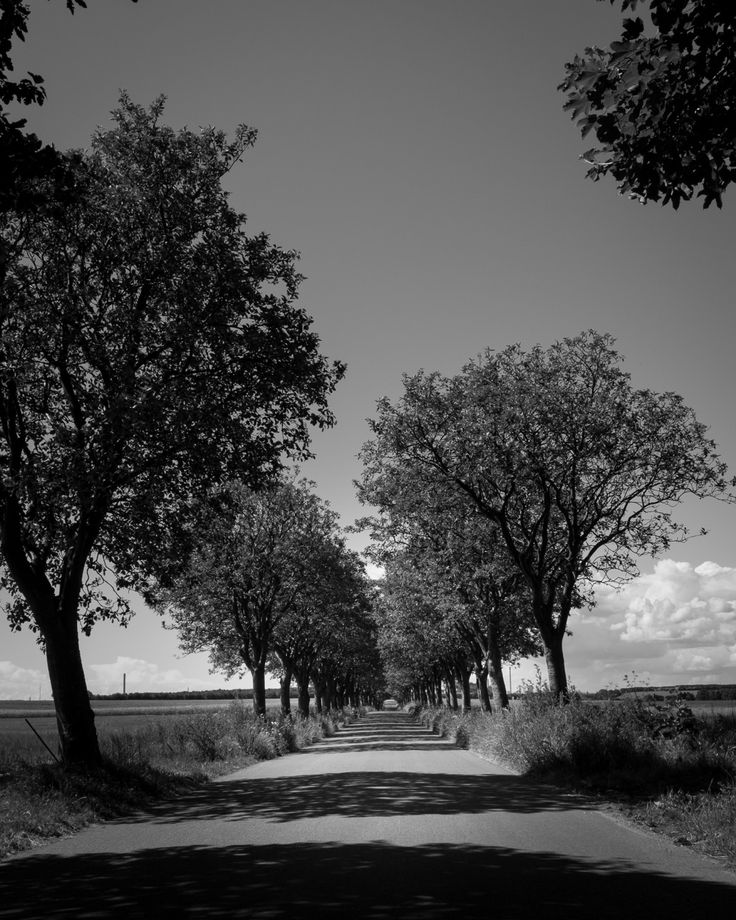 Day 42 - The Road