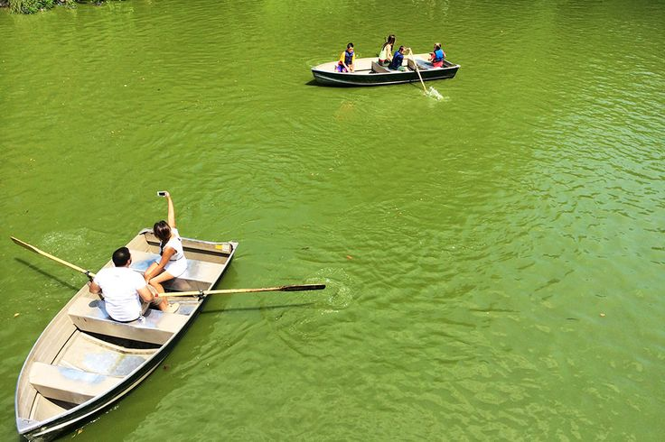 International Tourism to the United States Dropped in 2016  Foreign visits to the U.S. in 2016 began to drop off after last summer. Pictured are tourists in boats at Central Park in New York City. Skift  Skift Take: Many travel brands had said last year was tough as full-year international visits to the U.S. decreased in 2016 for the first time since 2009. Well need to wait until this time next year to see if this is a hiccup or a new trend.   Dan Peltier  International tourism tothe United…