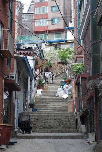 Heo Jung-il / 골목길 / #골목 #계단 #식물 / 2014 04 26 /