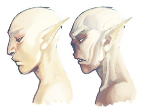 The Elder Scrolls: Falmer/Snow Elves || I'm gonna cross nerdoms together, but the one on the right looks like Voldemort! :P