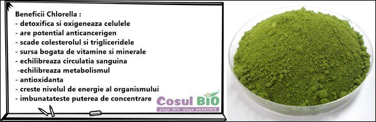 Beneficii Chlorella : - detoxifica si oxigeneaza celulele - are potențial anticancerigen - scade colesterolul si trigliceridele - sursa bogata de vitamine si minerale - echilibreaza circulatia sanguina  -echilibreaza metabolismul - antioxidanta - creste nivelul de energie al organismului - imbunatateste puterea de concentrare