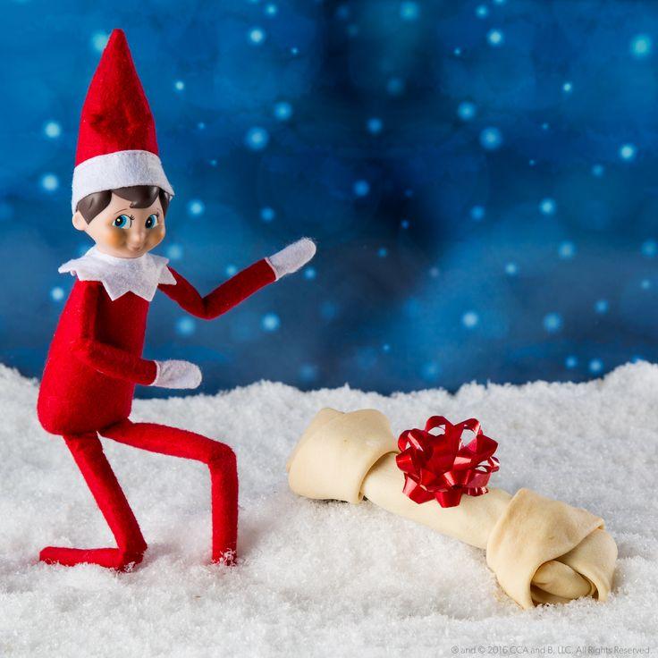 ... Elf on the Shelf Ideas on Pinterest | Elf on the shelf, The elf and