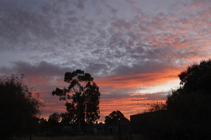 Sunset at Rutherglen, Victoria, Australia