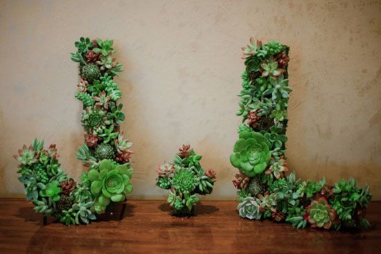 Wedding trend: piante succulente