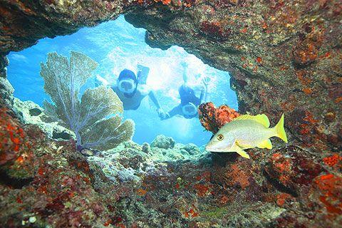 Key West Snorkeling!
