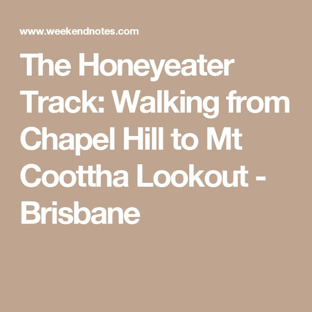 The Honeyeater Track: Walking from Chapel Hill to Mt Coottha Lookout - Brisbane