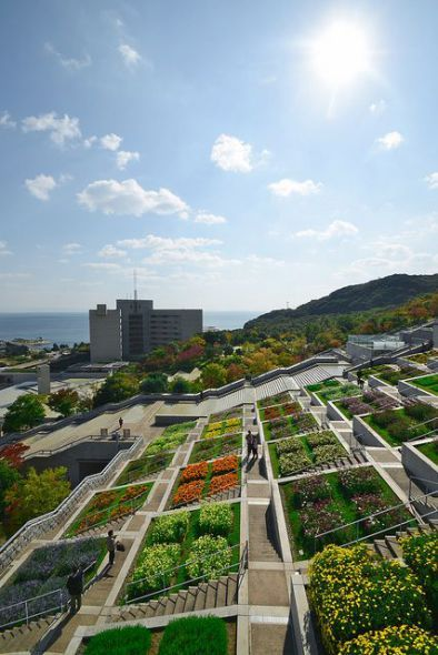 El jardín botánico de Awaji Yumebutai Hyakudanen, proyectado por Tadao Ando en la prefectura de Hyogo (Japón) fue construido como monumento fúnebre para recordar a los 6.000 fallecidos en el terremoto de Kobe, de 1995 –que en la zona se conoce como el Gran Terremoto de Hanshin-Awaji. Aquel desastre tuvo su epicentro en la isla de Awaji, en la bahía de Osaka, donde se encuentra el jardín.