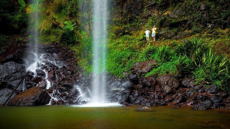 Gold Coast Hinterland waterfalls and walking trails
