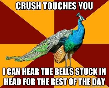 Thespian Peacock....hahah hairspray humor