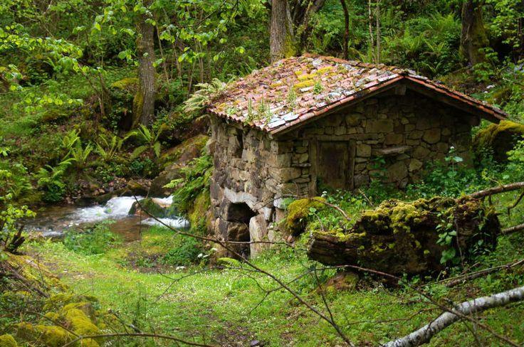 Molino de corrorrio. Faedo (Quiros). Valles del Oso. Assturias © Loli Gallego.