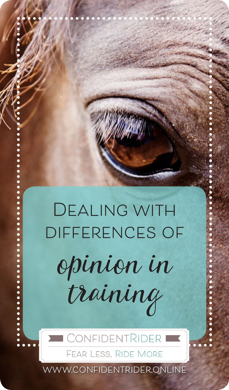 Differences in opinion in the horse world- they are many and varied! So how do you deal with situations where you may share a difference in opinion or training methods with someone in your riding life- be that a friend, horsey partner in crime, or otherwise- and forge a way forward without feeling compromised?