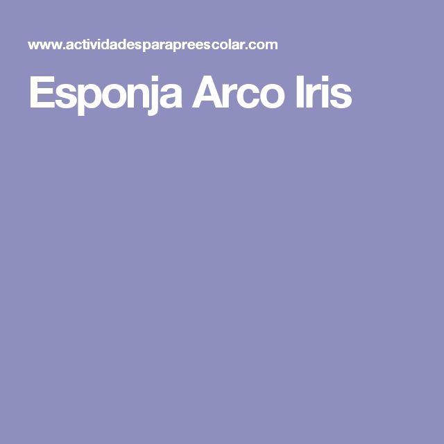 Esponja Arco Iris