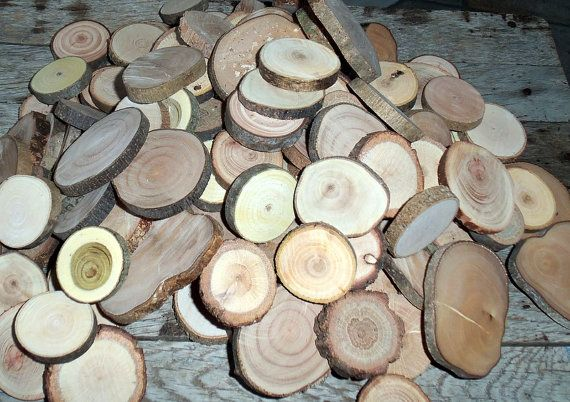 100 Assorted Blank Tree Branch Slices DIY by PebblesAndWoods