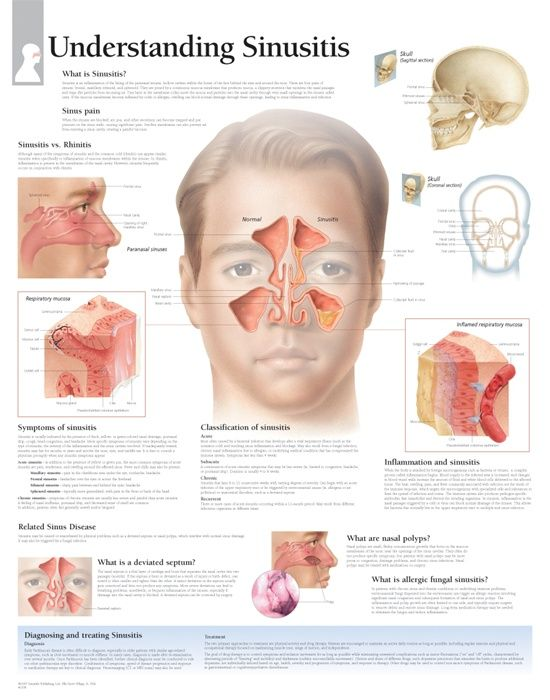 Best Natural Remedies For Sinus Pain