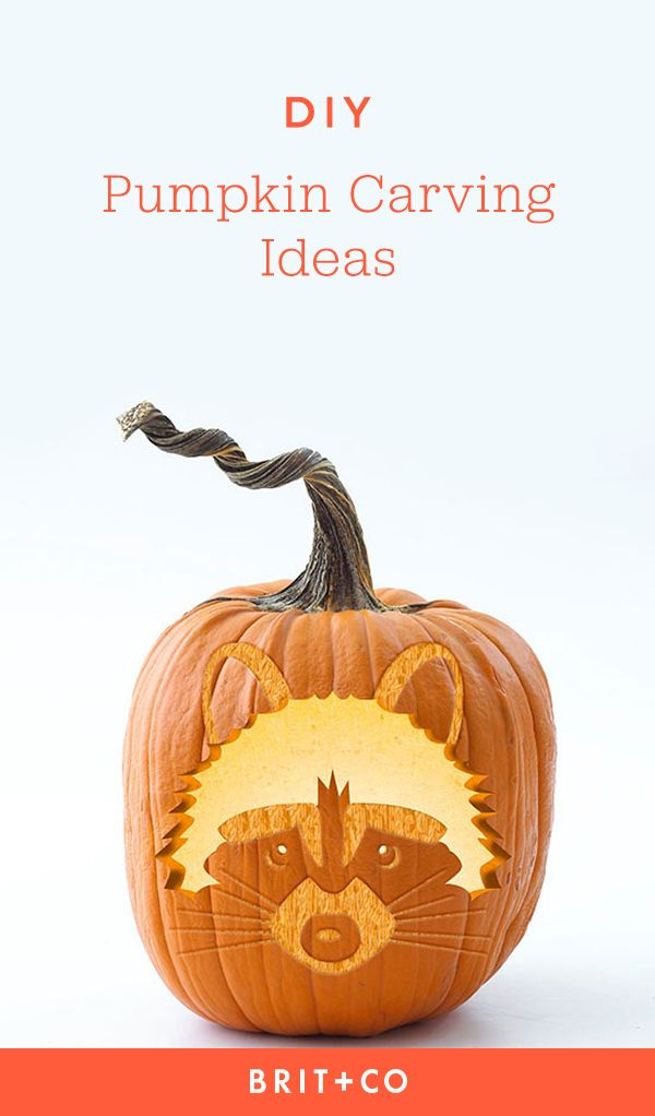 Best halloween images on pinterest