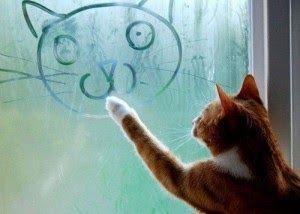 Gambar Kucing Galau Lucu Yuk Langsung Simak Artikel Ini Dibawah Ini Juga Adalah Gambar Gambar Kucing Bagus Dan Lucu Seka Cats Funny Dog Pictures Cats Artists