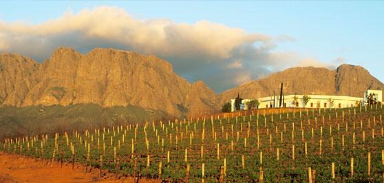 Vergelegen Winery, Summerset, South Africa