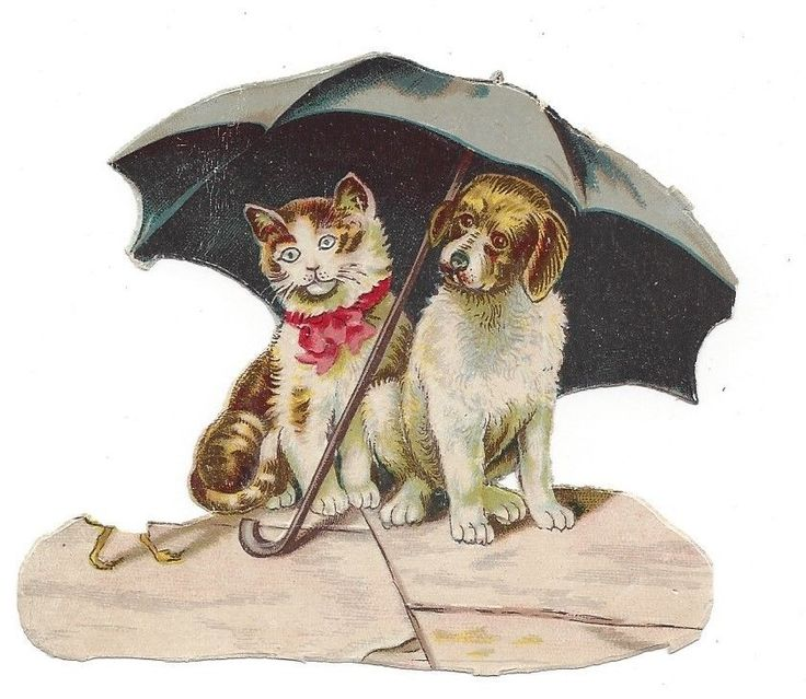 Victorian Die Cut Scrap Cat and Dog Sharing Same Umbrella