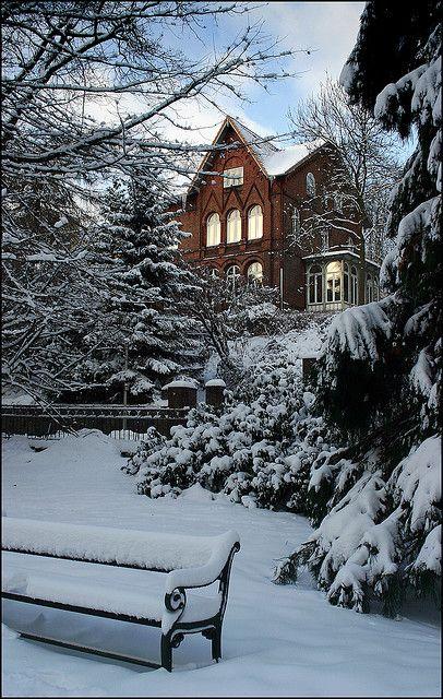 Winter in the old botanical garden, Kiel, Germany
