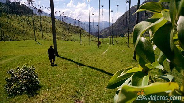 Valle del Cócora, Colombia, destacada del concurso de fotos de mayo. Foto del viajero Fede_M. Mira más fotos ganadoras en www.viajeros.com