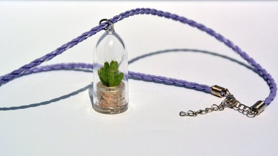 Living Plant Necklace - Apple Cactus - Live Succulent Plant Necklace. Terrarium…