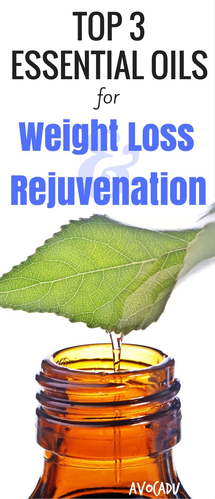 Herbs for weight loss Top Three Essential Oils for Weight loss and Rejuvenation