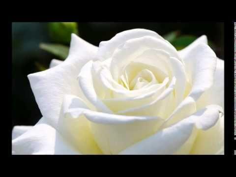 Meditace pro očištění a posílení od Doreen Virtue - YouTube
