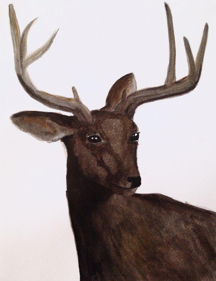 #deer#drawing#acryl