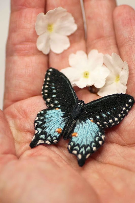 Plays with needles - The blue butterfly