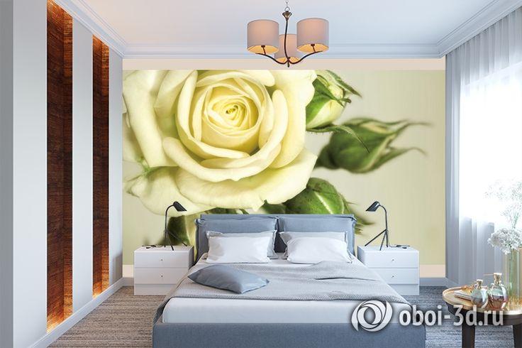 "3D Фотообои ""Бежевая роза"""