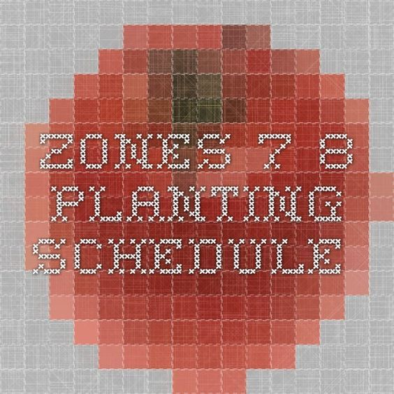 Zones 7-8 Planting Schedule