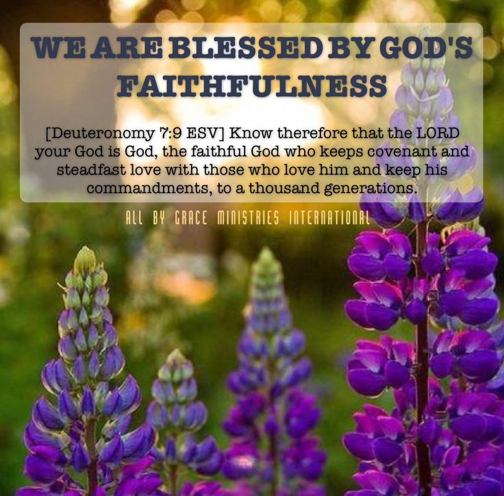 We Are Blessed By God's Faithfulness