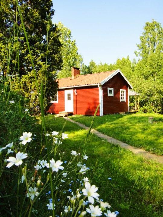 Auch Hunde sind in unserem roten Sommerhaus am Langen See herzlich willkommen! http://www.sommerhaus.se/ferienhaus-schweden-see-hund.html
