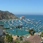 The Avalon Hotel on Catalina Island #California- cute island!!
