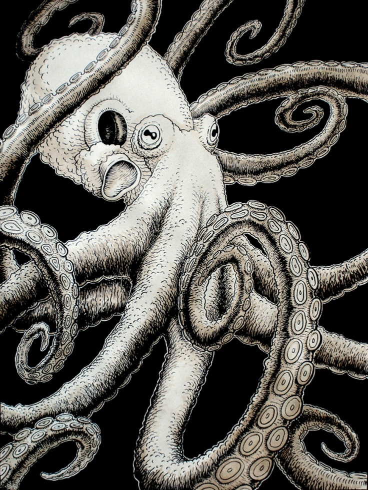 Octopus by *Rode Egel (Eric Snelleman)