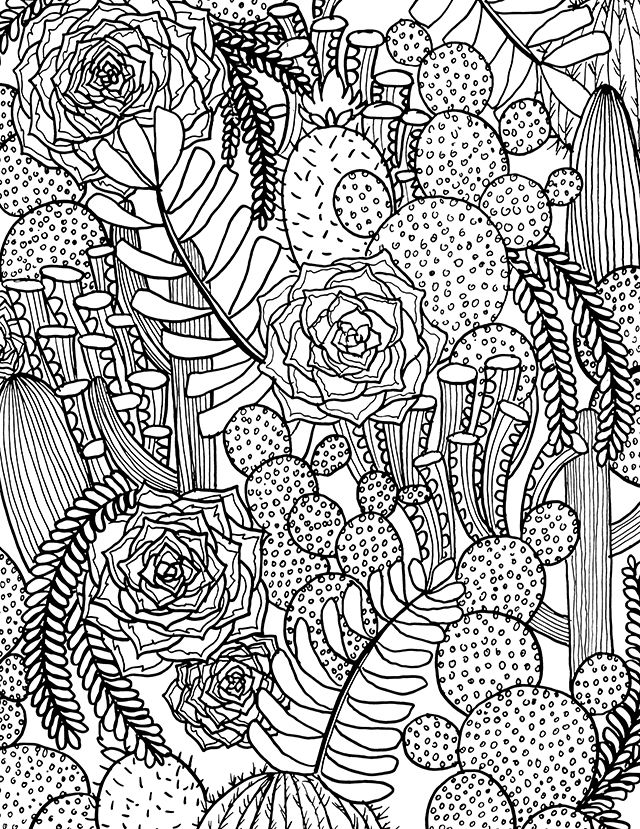 Succulent Coloring Pages Adult Coloring Pages Mandala
