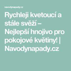 Rychleji kvetoucí a stále svěží – Nejlepší hnojivo pro pokojové květiny!   Navodynapady.cz