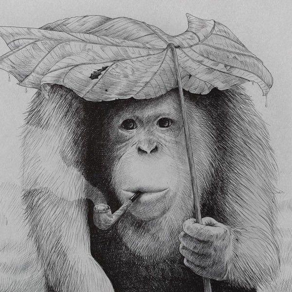 Løfberg - Orangutang |€27 |ENIITO
