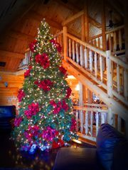Secluded Log Home With Luxury Amenities, WiFi, Flat-Panel TVs, Huge Hot Tub