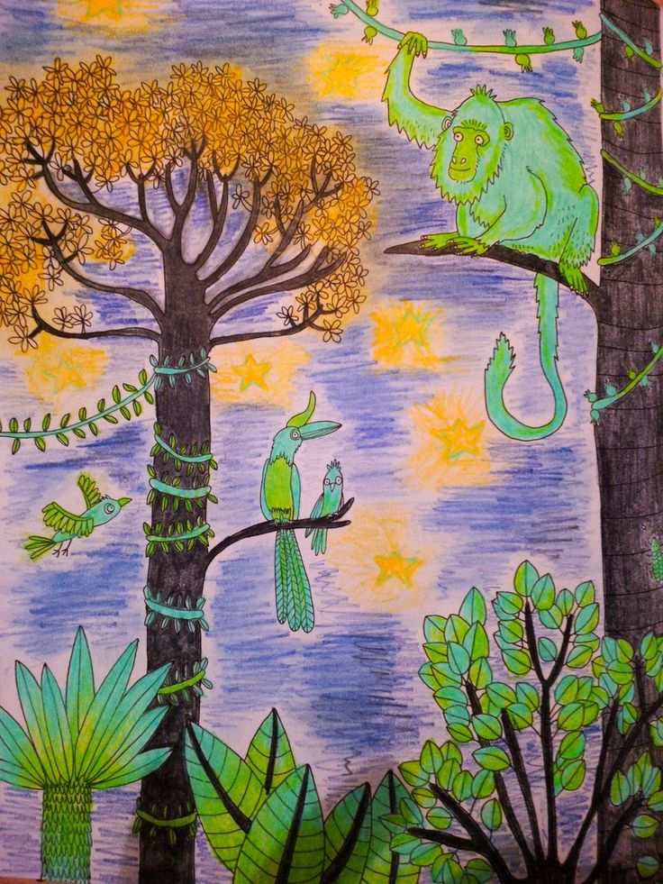 A beautiful coloured in night-time scene by @CarrieHindle shared on twitter! #JungleParadise