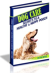 160 best recipes for homemade dog treats cookies and bones images dog care book dog food recipesbookdog forumfinder Image collections