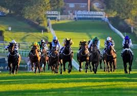 Wants to know Horse Tips Today? Visit racedayratings.co.uk to know about all #Horse #Racing #Tips every day and all the latest news about it.