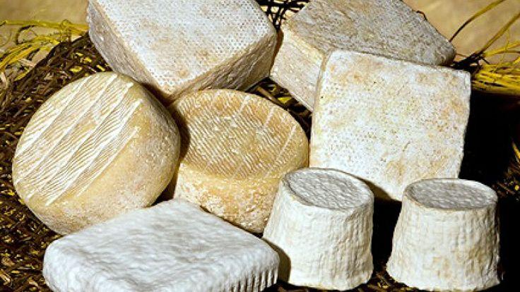 Gli splendidi formaggi di Franco Lecca, un artigiano del gusto.  Some goat cheeses from Franco Lecca, the king! http://winedharma.com/it/cantina/agriturismo-ca-de-monti#