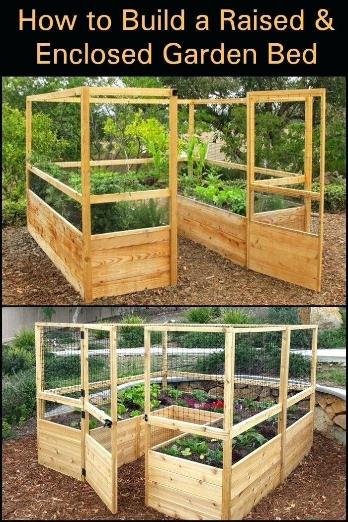 Kits Raised Enclosed Garden Bed Coolstuff Vegetable Garden
