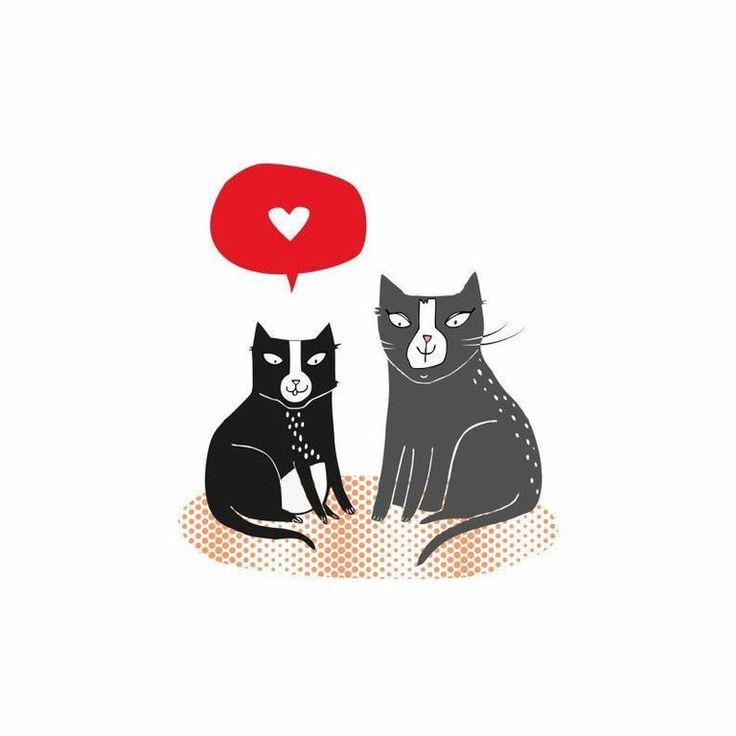 LOVE CATS CAT CARD