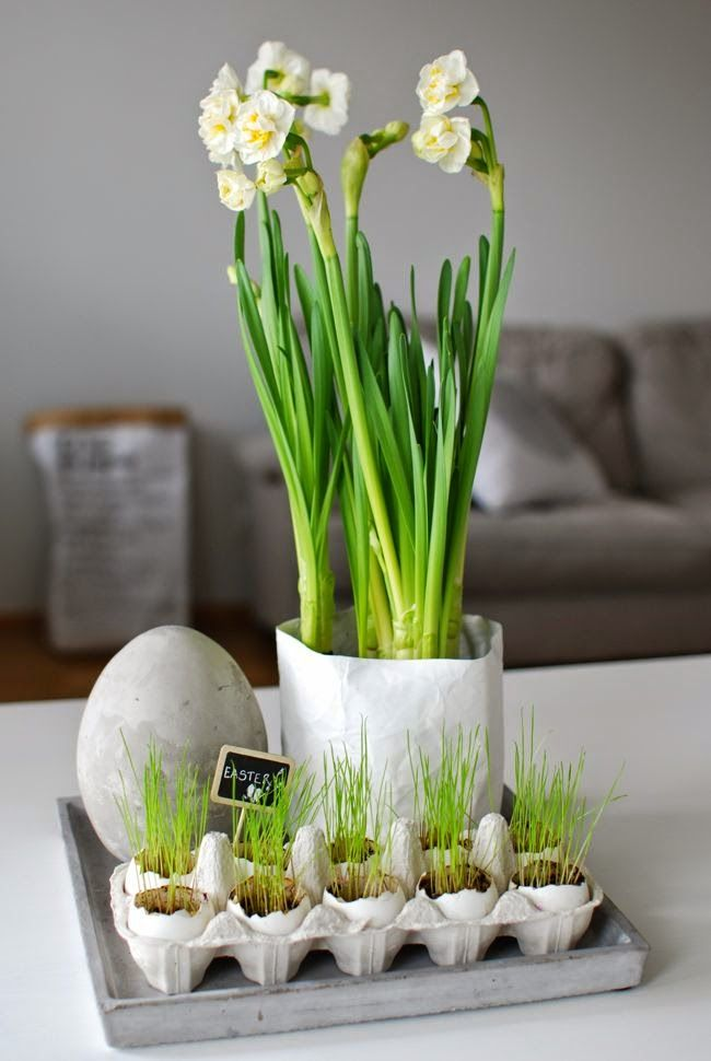 Kuistin kautta: Rairuoho kananmunan kuorissa ja betoninen pääsiäismuna